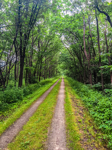 Along the Great River State Bicycle Trail in Trempealeau County WI