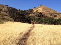 View northeast from the brodiaea reserve on Colby Trail in Glendora