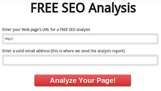 Free SEO Analysis by Web Gnomes