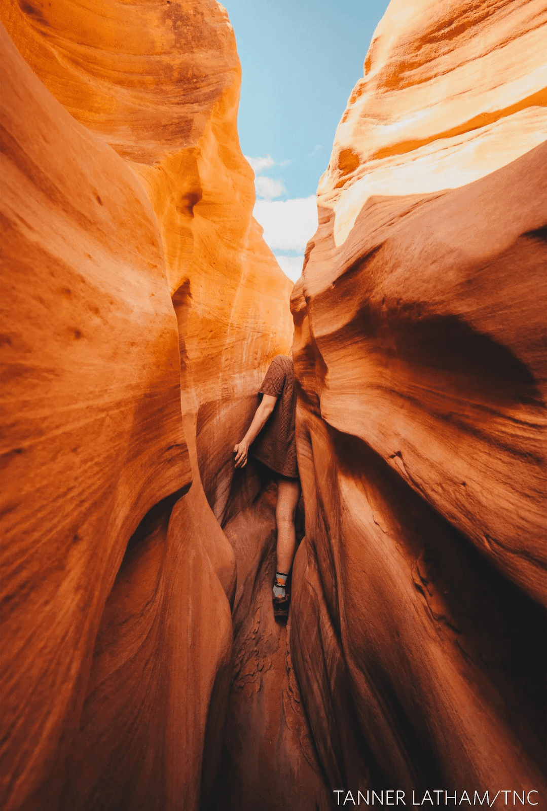 hermosas-fotografías-de-la-naturaleza-ganadoras-del-Global-Photo-Contest-2018