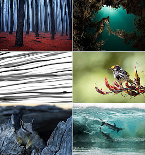 australian geographic nature photographer of the year 2018