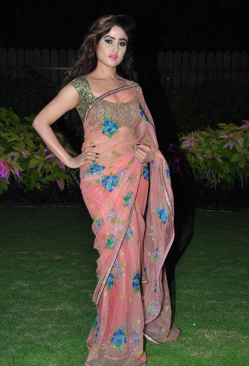 Tollywood Actress In Transparent Pink Saree Sony Charishta