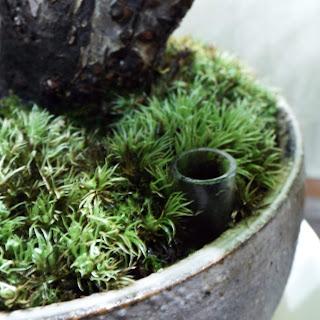 液体肥料用井戸(浸透桝)