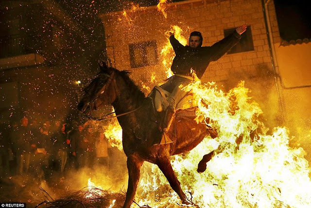 The Spanish festival of horses and fire - Entertainment News