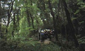 riserva naturale Orientata