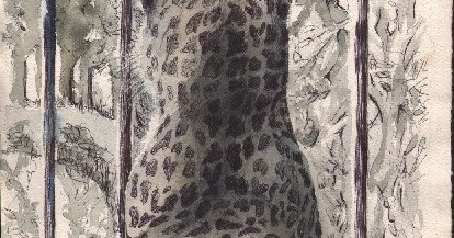 David Prashker S Private Collection The Panther