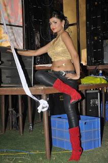 Actress Shreya Vyas Stills at Eedo Rakam Aado Rakam Movie Audio Launch  0042.jpg