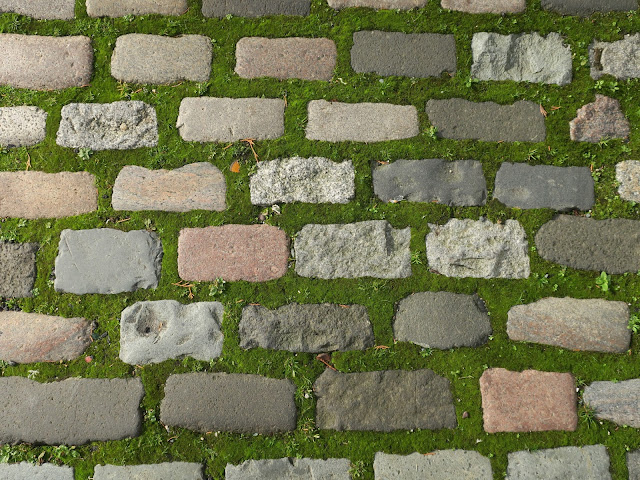 Brick shaped cobbles with moss between