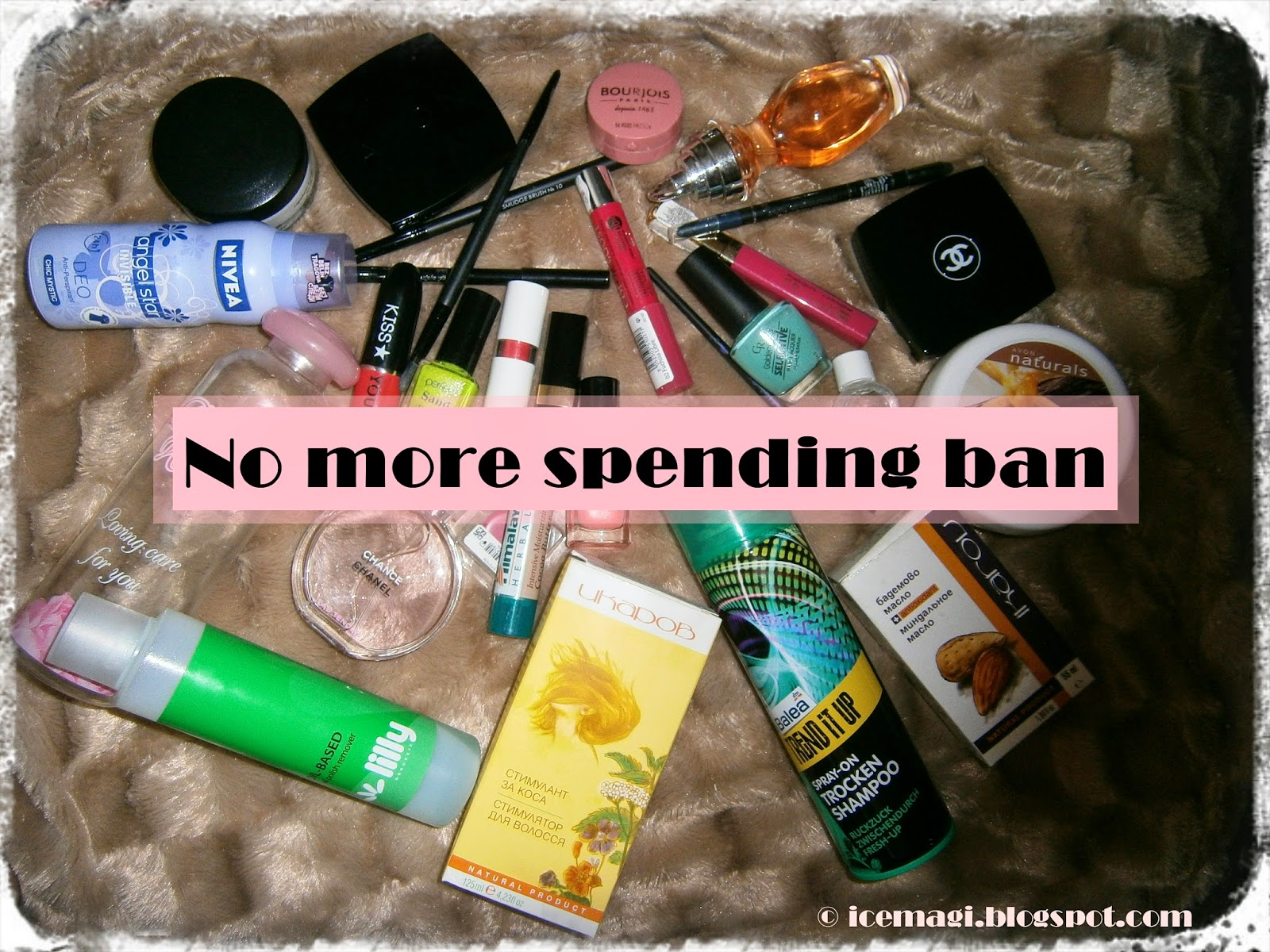 100 day spending ban