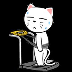 White Weird Cat : Boring Day