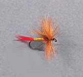 color picture of the professor dry fly