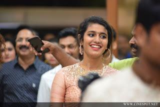 Priya Varrier Saree Pos 8