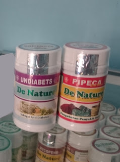 obat dibetes de nature