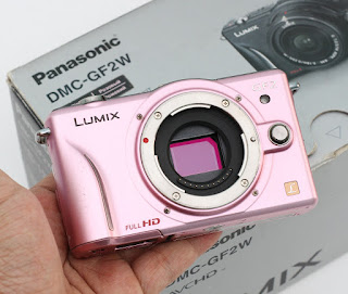 Mirrorless Panasonic DMC-GF2W