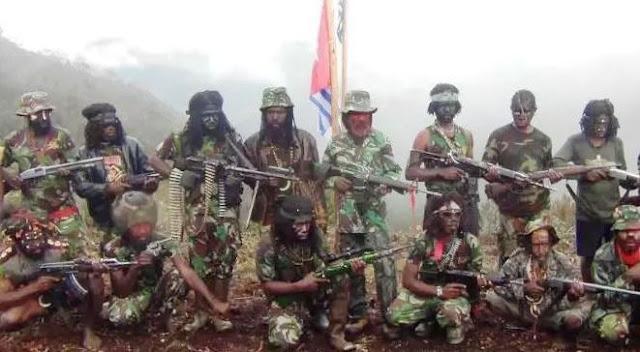 Penanganan OPM Harusnya Dilakukan TNI, Bukan Polisi