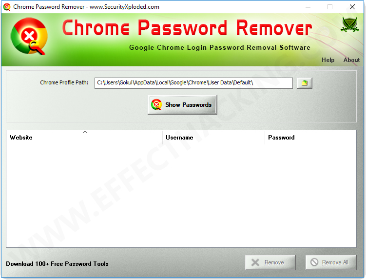 Chrome Password Remover Screenshot 1