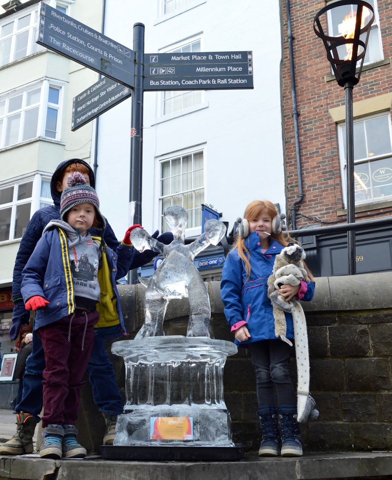 Fire and Ice Durham 2017 | Photographs & Top Tips for 2018 - melted hydra
