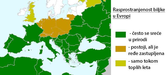 Rasprostranjenost biljke Popino prase po Evropi