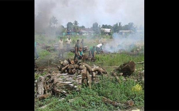 Personil Babinsa Lakukan Pembersihan Lahan Baru Seluas 1,5 Ha di Desa Salah Bulan