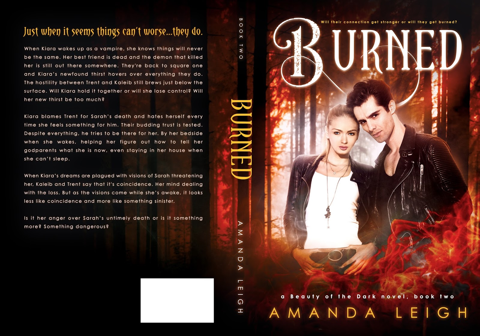 Hea pr cover reveal burned by amanda leigh paranormal romance amanda leigh has had a love of words since before she could write them herself once she learned to read and write herself she just couldnt stop fandeluxe Choice Image