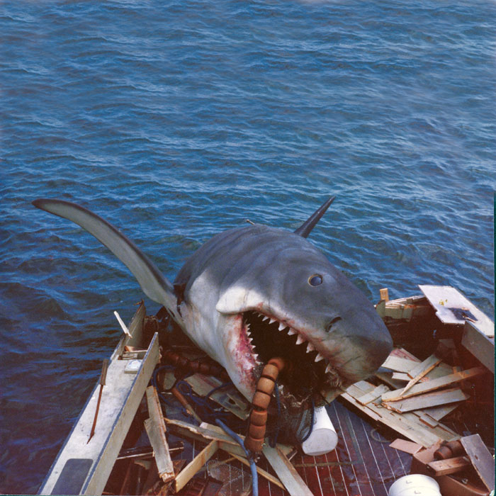 Jaws shark from the book JAWS: Memories From Martha's Vineyard