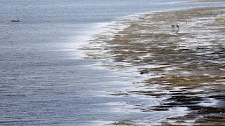 """اكتشاف بحر جديد فى مصر خزان """"الحجر الرملي"""" تحت الارض فى الصحراء الغربية قد يقي مصر الظمأ"""
