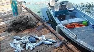 Período do defeso tem início dia 15 de novembro em Rondônia