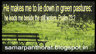 Psalm 23:2  He makes me to lie down in green pastures: he leads me beside the still waters.