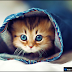 صور قطط كيوت 2016 خلفيات قطط جميلة جدا