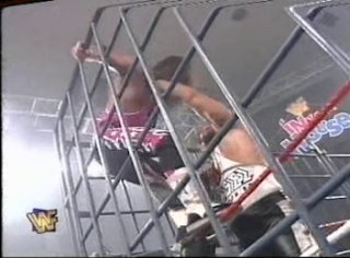 WWF / WWE - In Your House 6 - Rage in the Cage - Bret Hart defends the WWF title against Diesel in a cage match