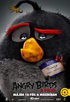 nuevos%2Bposters%2Bpelicula%2Bangry%2Bbirds 05