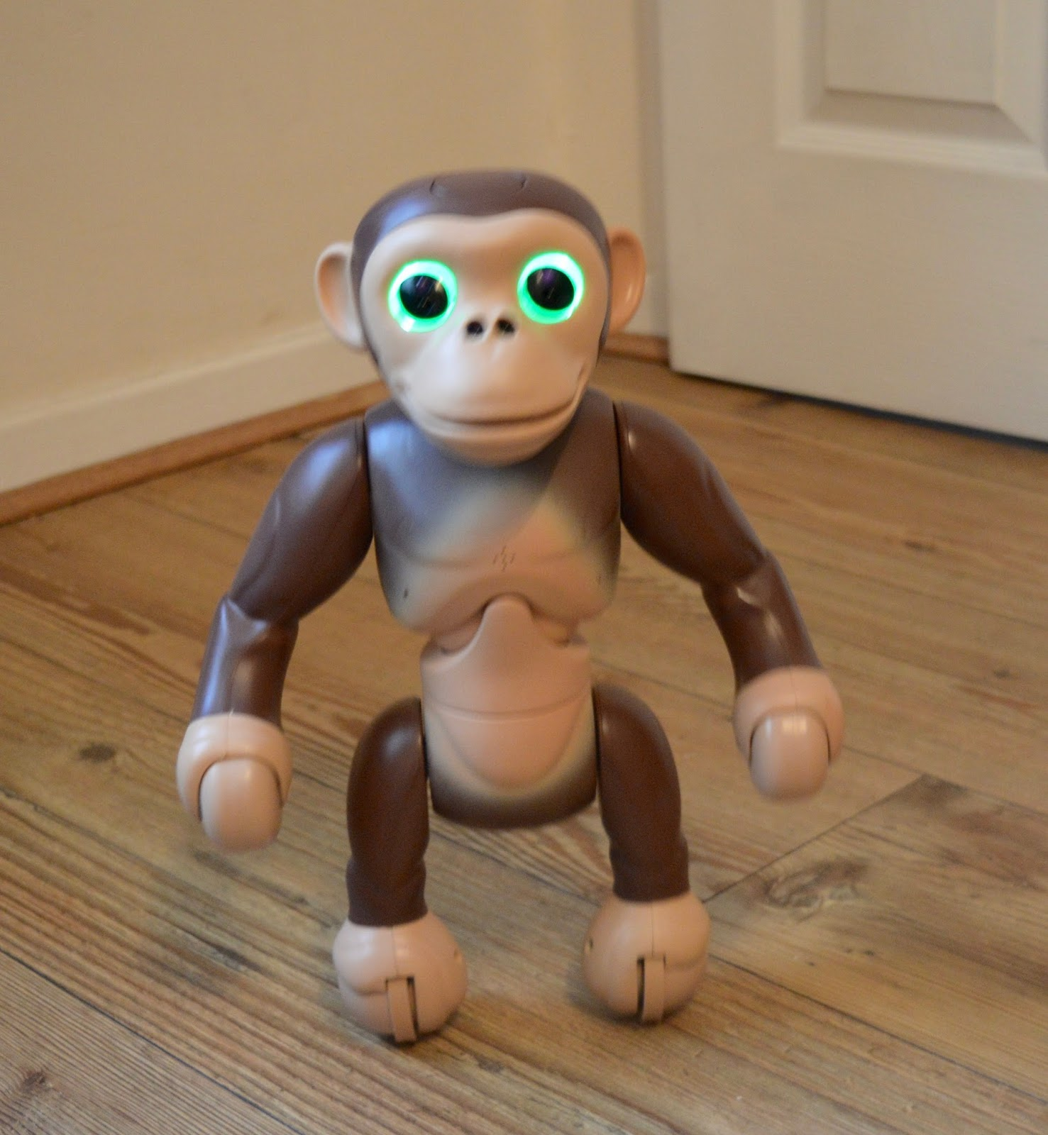 Zoomer Chimp Review | Ready for action
