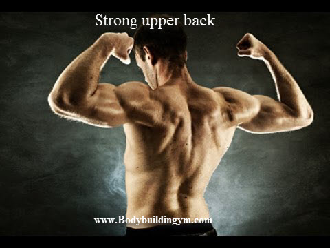 Strong upper back