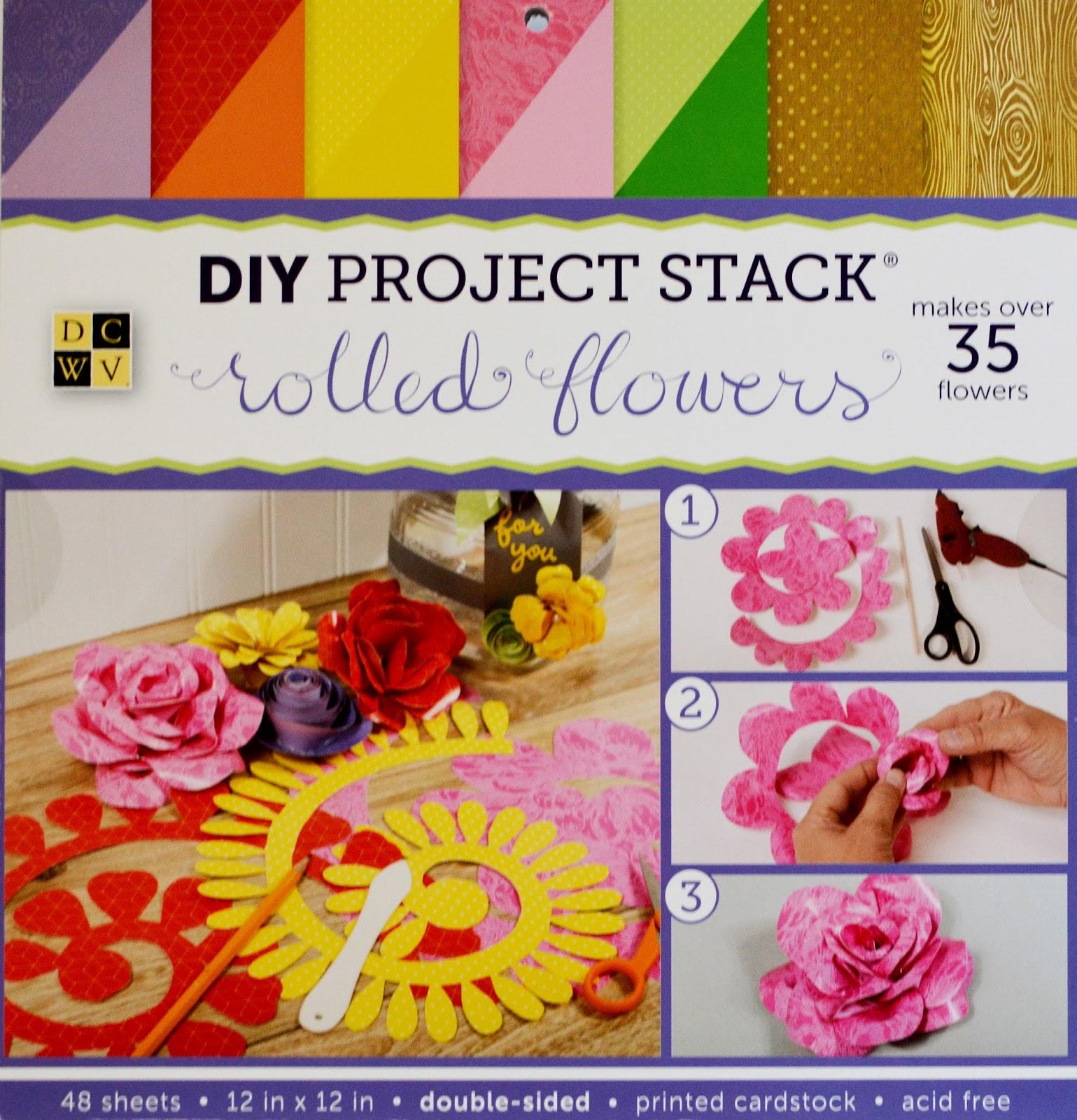 Jeri Vann: My Creative Mind: Paper Succulent and Flower Frame