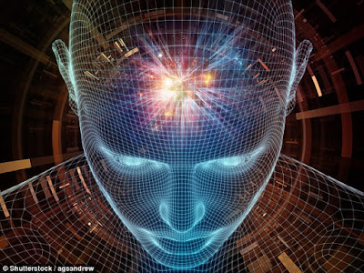 WHERE DOES CONSCIOUSNESS COME FROM