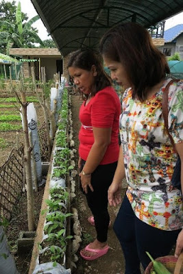 farm tours philippines