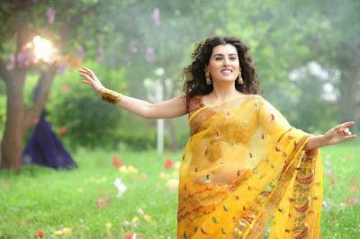 Archana-Veda-transparent-saree