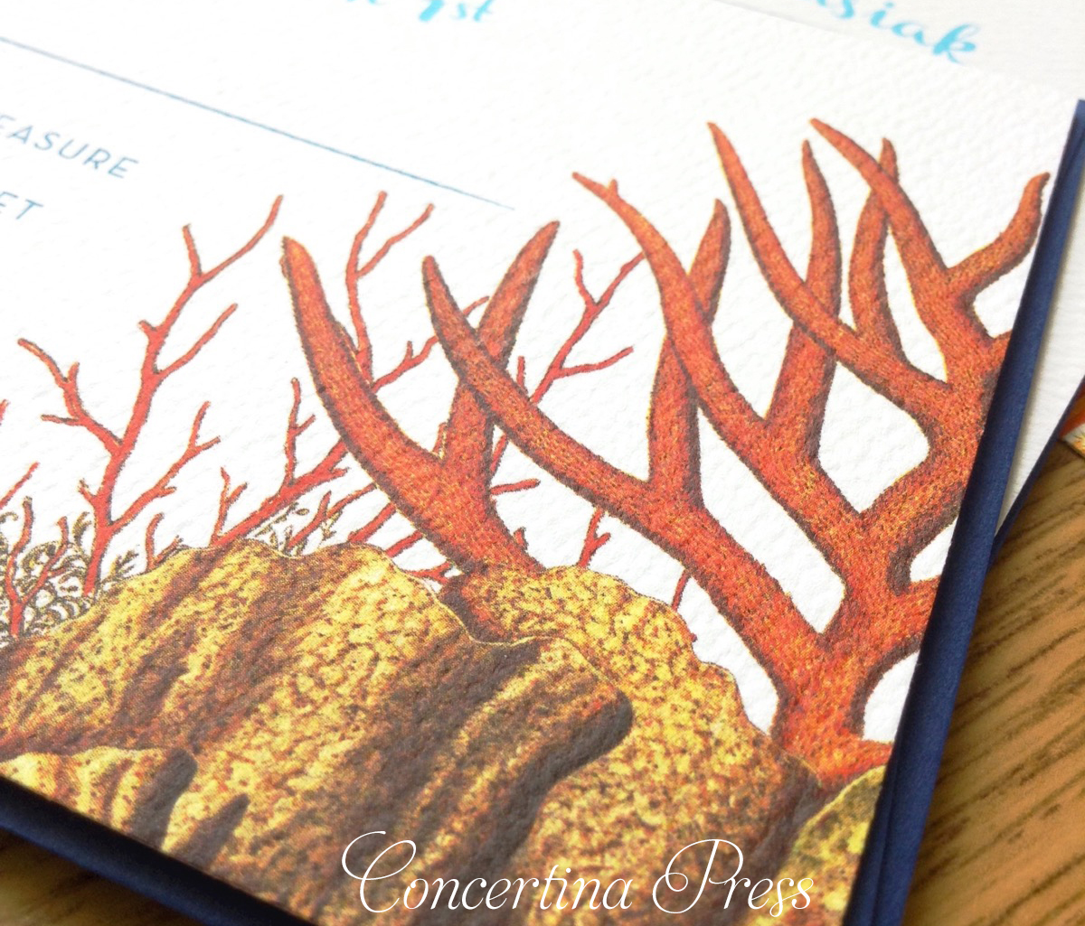 Shark Wedding Invitations from Concertina Press with Closeup of red coral rsvp card