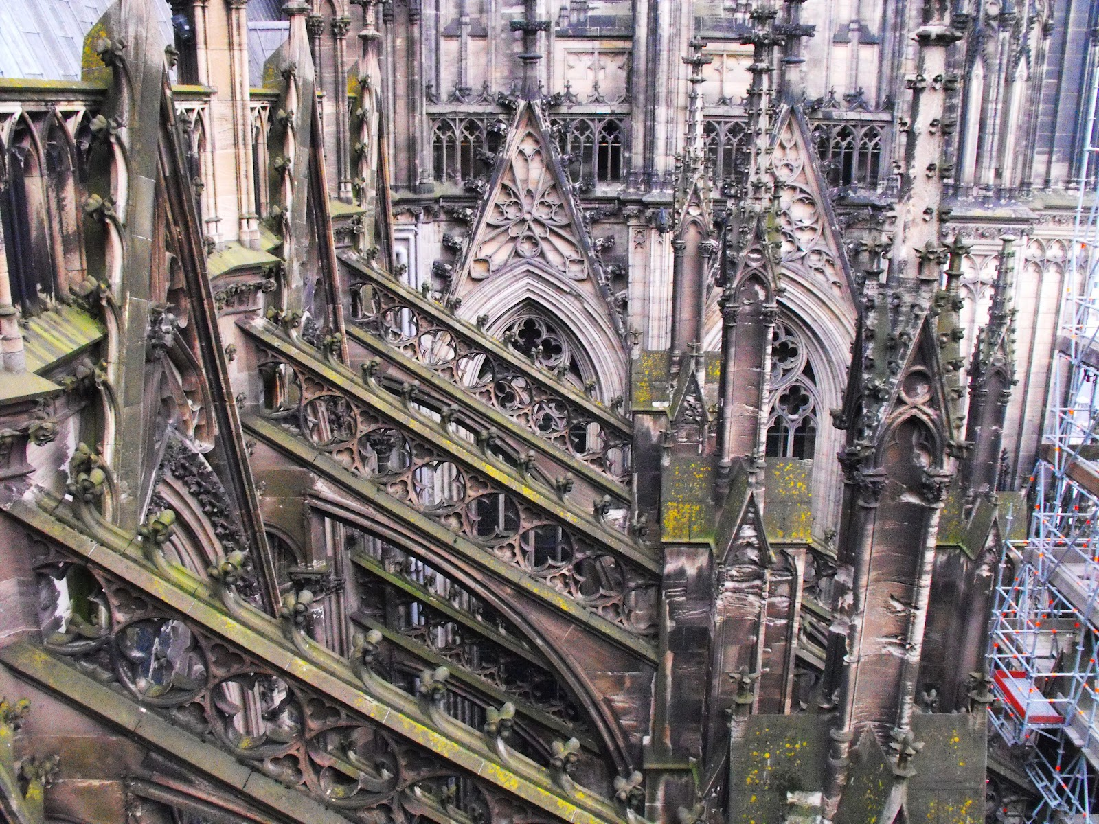The English Beat Dizzy Miss Lizzy Cologne Cathedral