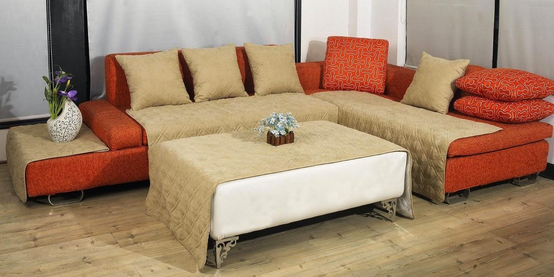 bed bug sofa cover Catosferanet