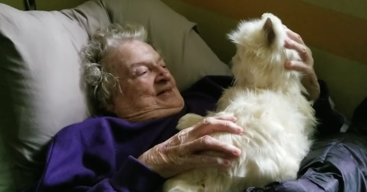 Watch Mom With Dementia React to Being Given Robotic Cat