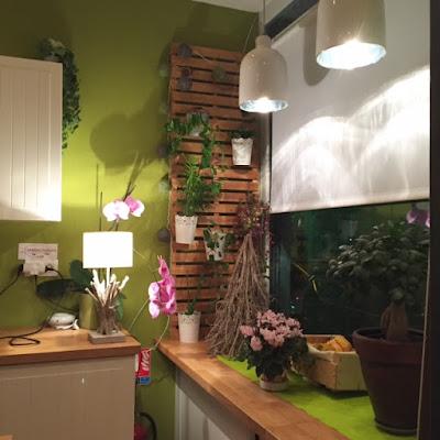 Cabinet naturopathe Puteaux : L'atelier Naturo
