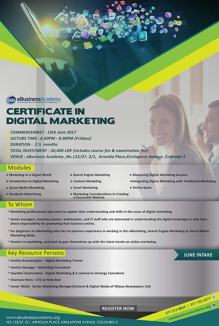 eBusiness Academy   Certificate in Digital Marketing - June intake.