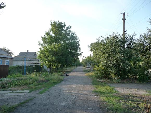 Авдеевка. Улица Княгини Ольги