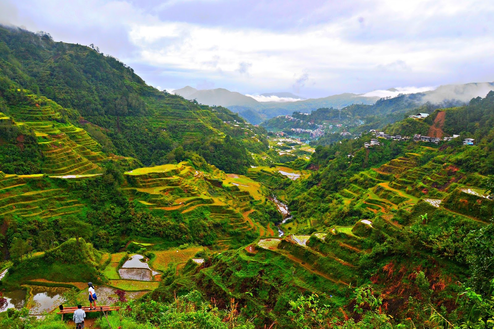 Ifugao banaue rice terraces for What are terraces