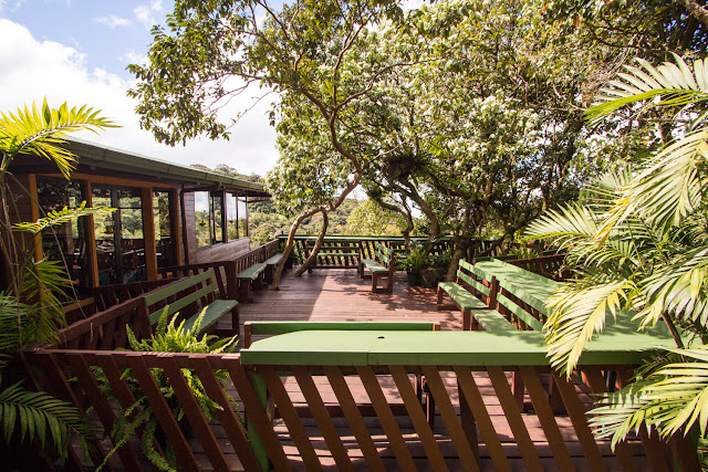 Terraza exterior en el Cloud Forest Lodge