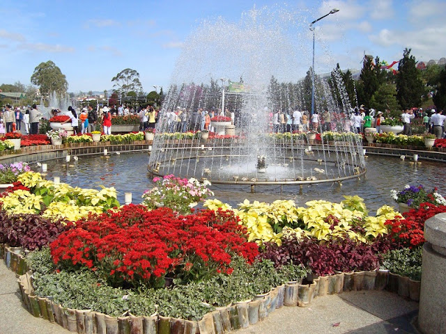 Dalat Sightseeing – The Magical City of Flower