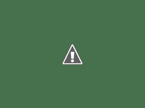 用木沢出合の先で橋を渡る