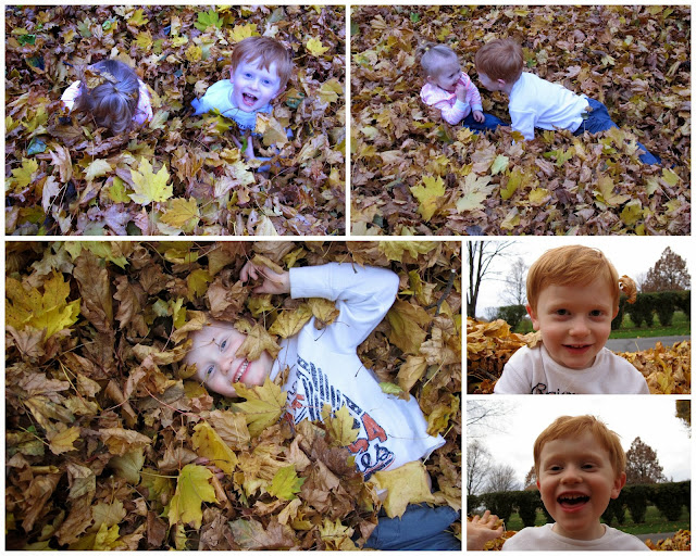 These Kids LOVE Leaves