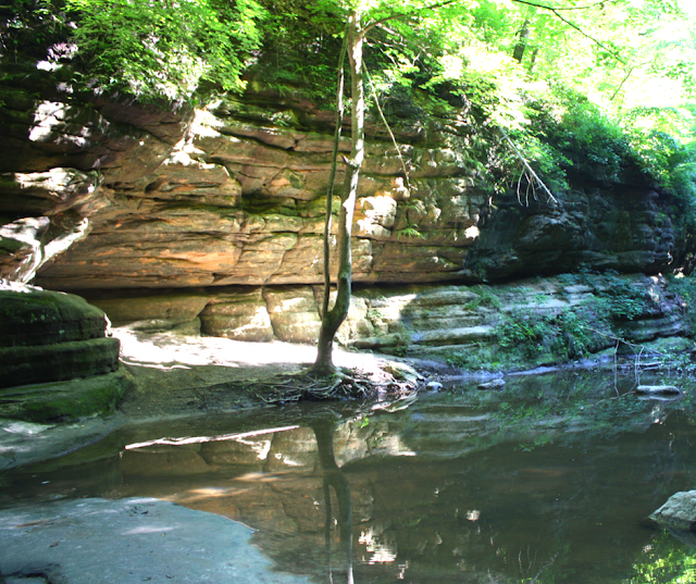 The stream at Matthiessen winding through sandstone cliffs.